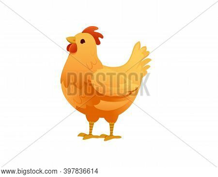 Cute Yellow Cock Farm Agriculture Hen Rooster Cartoon Animal Design Flat Vector Illustration