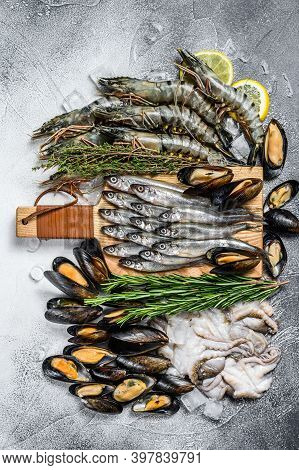 Raw Seafood Tiger Prawns, Shrimps, Blue Mussels, Octopuses, Sardines, Smelt. White Background. Top V