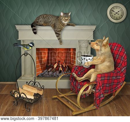 A Dog Is Sitting In A Rocking Chair And Drinking Coffee At A Fireplace At Home.