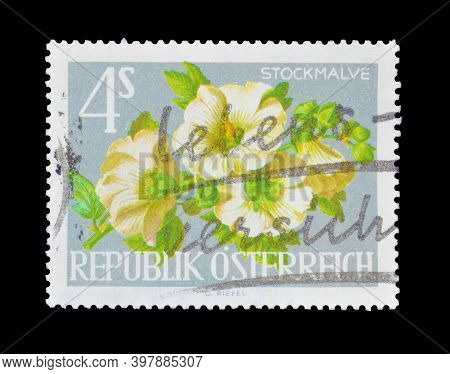 Austria - Circa 1980 : Cancelled Postage Stamp Printed By Austria, That Shows Alcea Rosea, The Commo