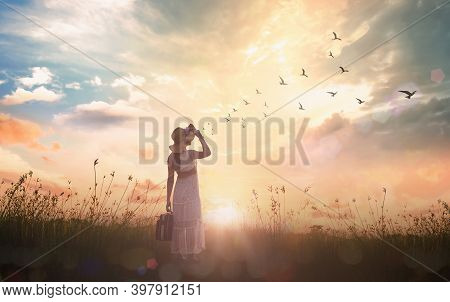 Freedom Concept: Silhouette Traveler Woman With Bird Flying On Meadow Sunset Background