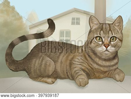 Feline obedient cat sitting illustration
