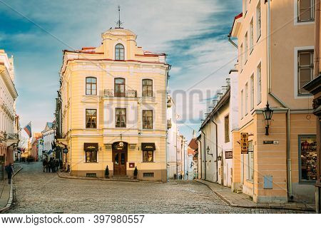 Tallinn, Estonia - December 22, 2017: Museum Of Marzipan In Cafe Miasmokk Near Town Hall Square. Exh