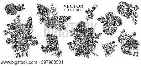 Flower Bouquet Of Black And White Peony, Carnation, Ranunculus, Wax Flower, Ornithogalum, Hyacinth S