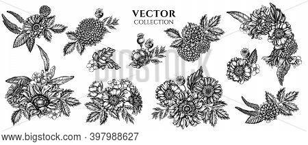 Flower Bouquet Of Black And White Poppy Flower, Gerbera, Sunflower, Milkweed, Dahlia, Veronica Stock