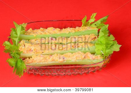 Green Leafy Celery On Red