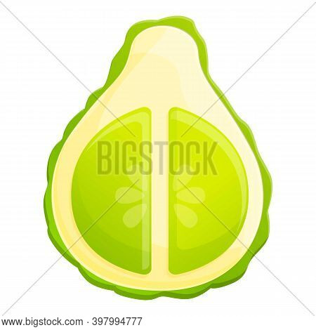 Bergamot Half Cutted Icon. Cartoon Of Bergamot Half Cutted Vector Icon For Web Design Isolated On Wh