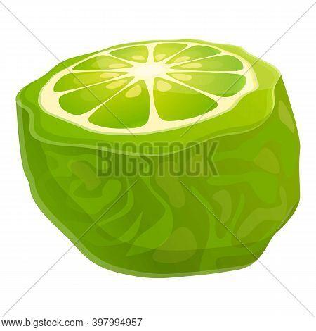 Bergamot Citron Icon. Cartoon Of Bergamot Citron Vector Icon For Web Design Isolated On White Backgr