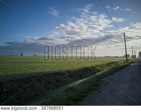 Countryside Landscape With Field 2