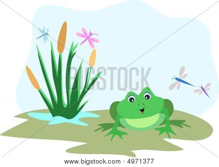 Frog With Dragonfly Sky Frame