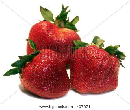 Three Berries Closeup