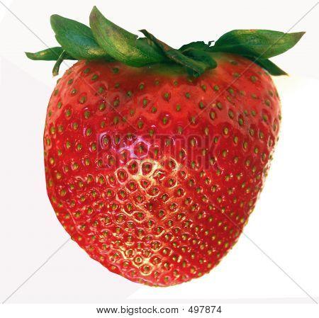 Single Berry