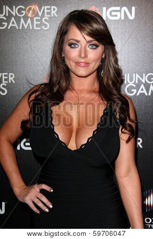 LOS ANGELES - FEB 11:  Kristy Hill at the