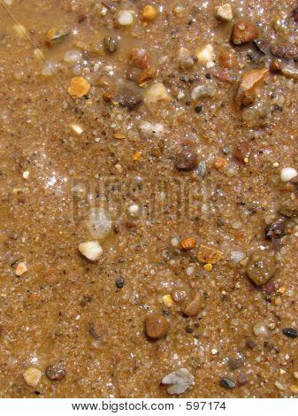 Beach Closeup