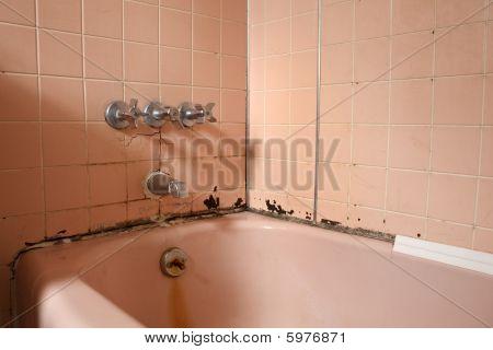 Old Bath