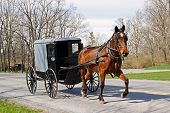 An Amish horse and carriage travels on a rural road in Lancaster County, Pennsylvania. poster