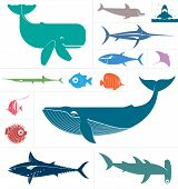 Vector set which represent various sea animals. Abstract decorative cute illustration. Graphic design elements for print and web. poster