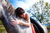 sensual girl leaned over the horse neck on nature background poster