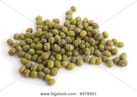 Mung Beans Side View