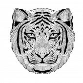 psychedelic tiger isolated poster