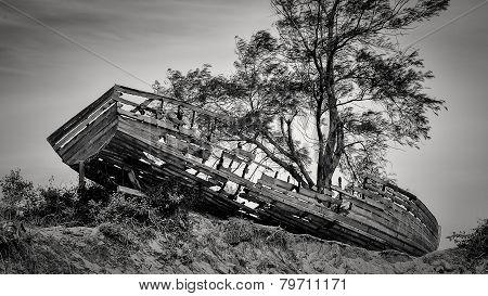 Shipwreck Along The Beach Of Maputo Bay