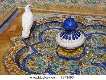 White dove  in the Mudejar Pavilion gardens - Maria Luisa Park.
