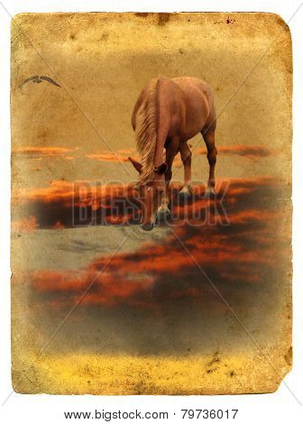 Horse On Red Cloud. Stylization Photo Under Retro Postcard.