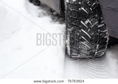 Tread In The Snow