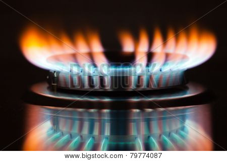 Gas burning in the burner of gas oven poster