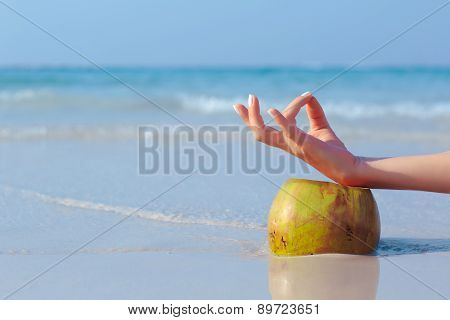 Female hand propped on coconut on sea background