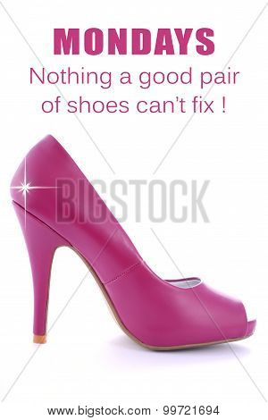Pink High Heel Stiletto With Funny Saying