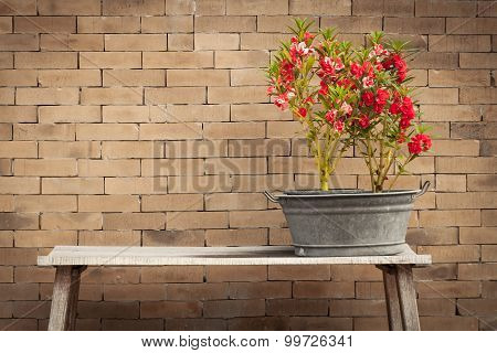 red flower and brick wall backgroundvintage style