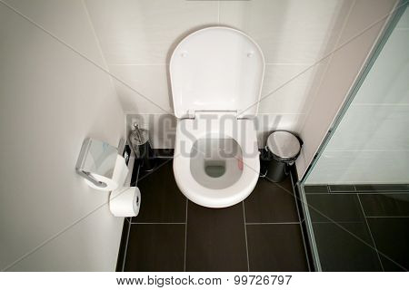 Toilet clean seat in the bathroom