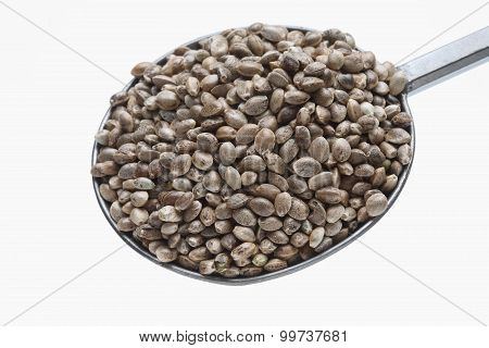 Hemp Seeds Or Hemp Nuts Are A High-protein Food Source