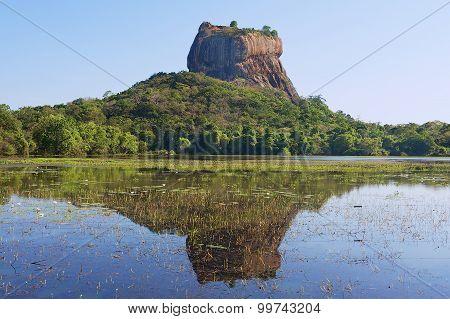 View to the Sigiriya rock fortress with reflection in water in Sigiriya, Sri Lanka.