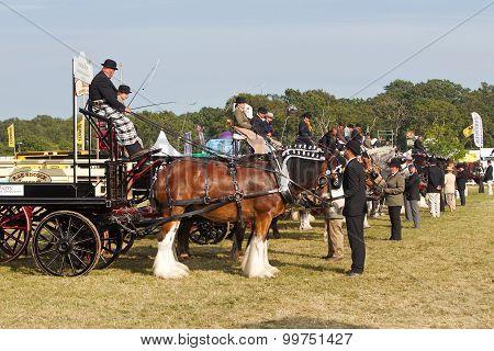 Cart line up