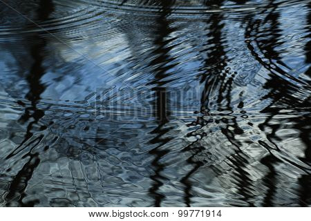 Circles in the water on the surface of the pond