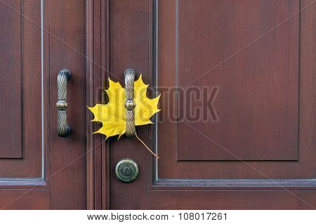 One Maple Leaf On Door Handle