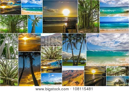 Maui landscapes collage