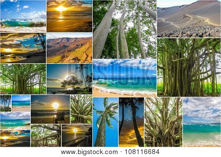 Maui Hawaii pictures collage