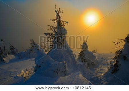 Evening Sun In Winter Mountains