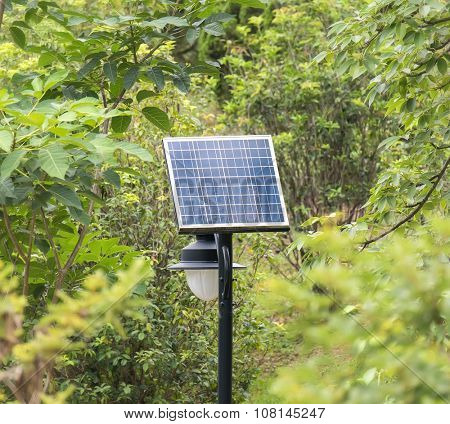 solar panel with green tree
