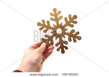 Snoflake In The Human Hand