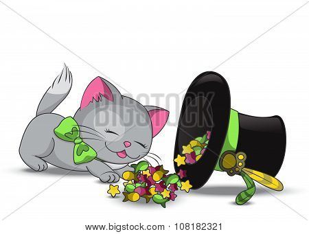 Cute cat eating candies