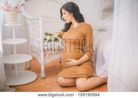Beauty Pregnant Woman
