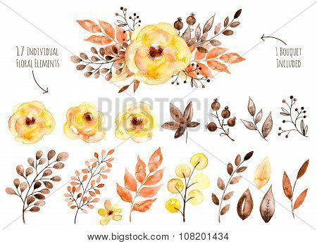 Colorful yellow floral collection with leaves and flowers,drawing watercolor.