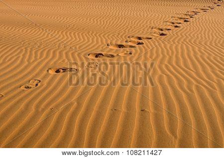 Desert Footprints Travel