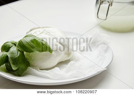 Close Up Fresh Buffalo Mozzarella With Basil In Fron Of Jar With Brine