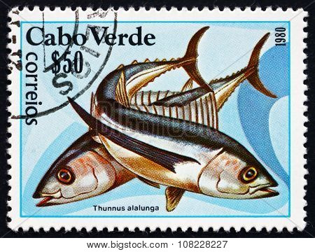Postage Stamp Cape Verde 1980 Albacore, Species Of Tuna Fish