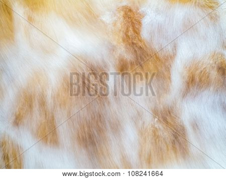 Texture Image Of Flowing Stream Water